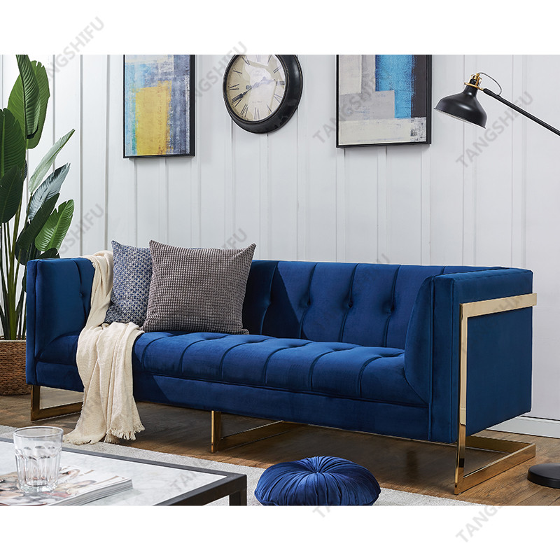 TSF-5507-3-Navy Gold-WI8866 Living room furniture